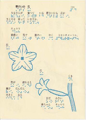 225-14.jpg