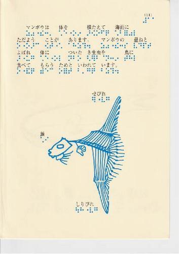 227-11.jpg