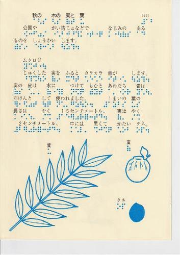 228−12.jpg